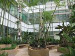 800px-the_courtyard2c_nlb_bldg1