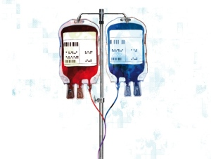 Blood1[1]