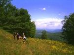 Trail photos 211