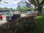 police-cars-at-holland-v-data