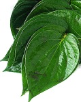eliminate_acne_betel_leaves