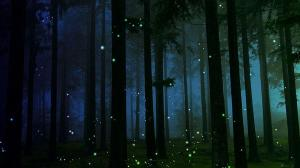when-do-fireflies-come-out_0bfa49a0-e4d0-4407-abe9-bc410a17d5f1
